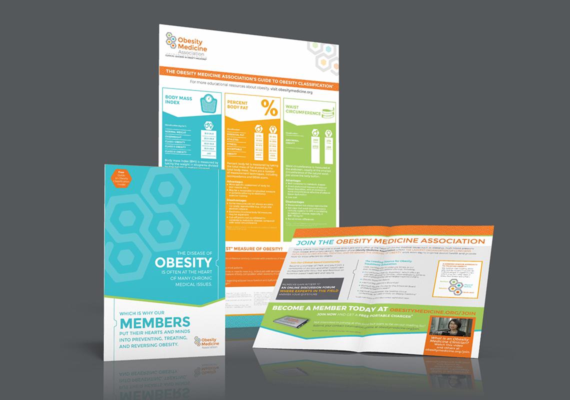 Obesity Medicine Association Rebrand | obesity medicine association